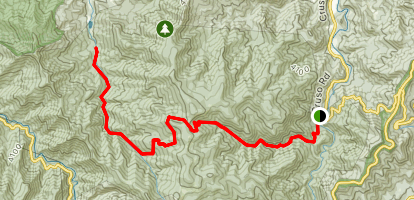 Shining Creek Path to Little East Fork Trail Map