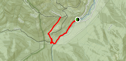Lower Maynard Burn Way Trail Map