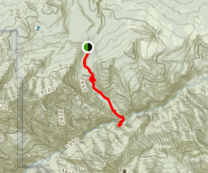 Slab Camp Trail Map