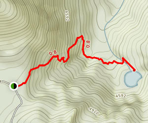 PJ Lake Trail Map
