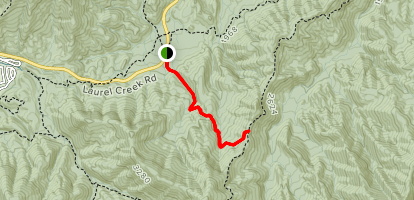 Lead Cove Trail Map