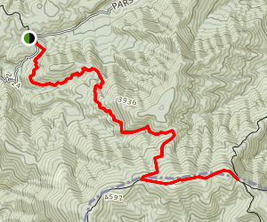 Gregory's Little Bald Trail Map