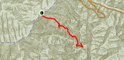 Fork Ridge Trail Map