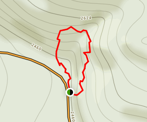 Twin Firs Loop Trail Map