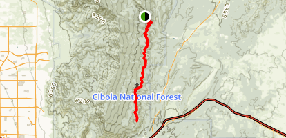 Faulty Trail Map
