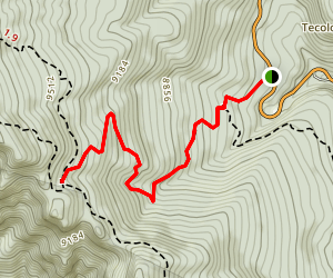 Tree Spring Trail Map