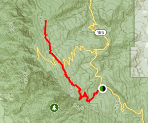Tree Spring to 10-K Trail Map