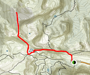 Mount Fremont Lookout Trail Map