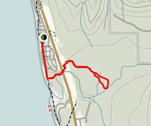 Kalaloch Nature Trail Map