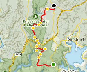 Great North Walk: Somersby to Staples Lookout Map