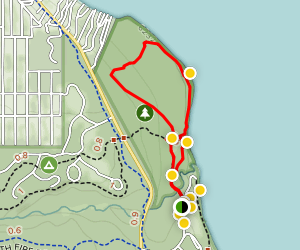 The Dolder Nature Trail Map