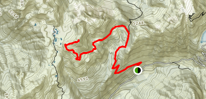 Yellow Aster Butte Trail Map