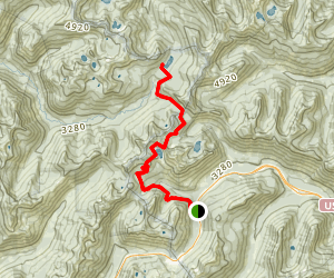 Lake Janus Trail Map