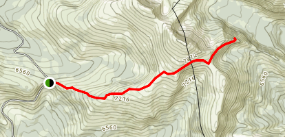 Tiffany Mountain Trail Map