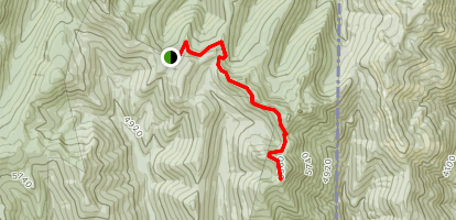 Shedroof Mountain Trail Map