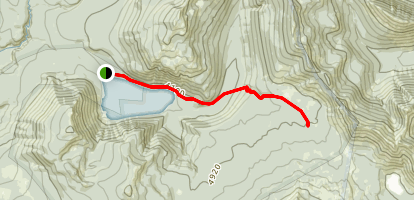Walupt Lake Trail Map