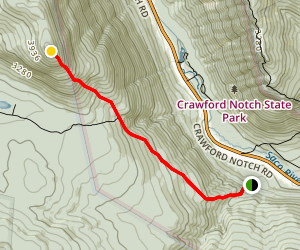 Mount Willey Trail Map
