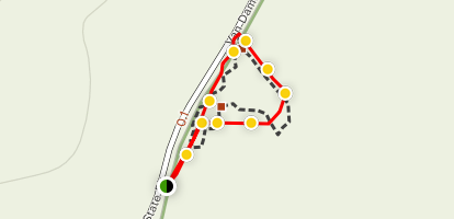 Pygmy Forest Discovery Trail Map