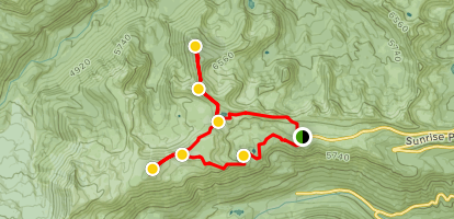Sunrise Rim Trail Loop and Mount Fremont Lookout Map
