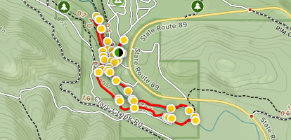 Burney Falls and the Burney Creek Headwaters Trail Map