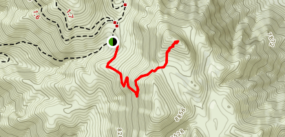 Cerro Gordo Peak Trail Map