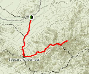 Wasson Peak Trail Map