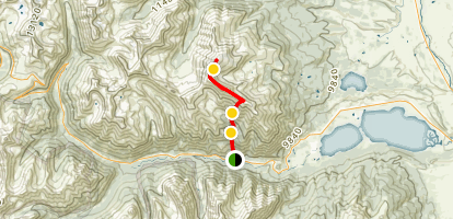 Mount Elbert via Black Cloud Trail Map