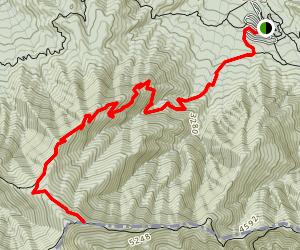 Snake Den Ridge Trail Map