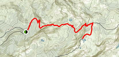 Chewing Gum Lake Trail Map