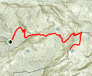 Gianelli Trail to Chewing Gum Lake Map