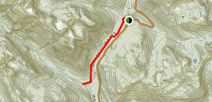 Ohanapecosh and Stafford Falls Trail Map