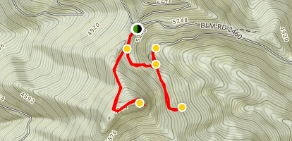 Bohemia Mountain Trail and Ghost Town Map