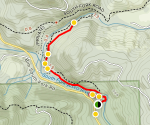 Alsea Falls Trail & Green Peak Falls Trail Map