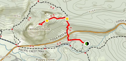 Lembert Dome Trail Map