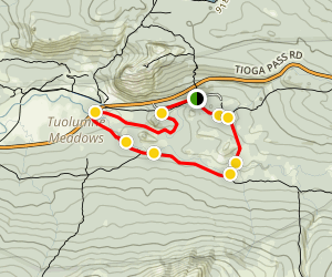 Tuolumne River Loop: Dana and Lyell Forks Map