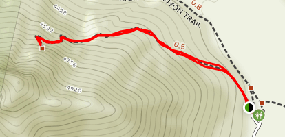 Slaughter Canyon Cave Trail Map