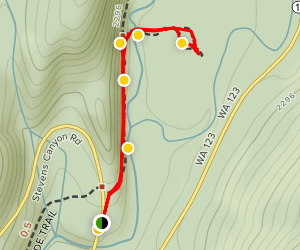 Grove of the Patriarchs Nature Trail Map