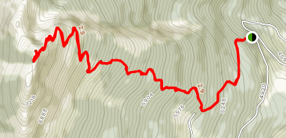 Saddle Mountain Lookout Map