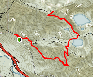 Mount Defiance and Mason Lake Trail Map
