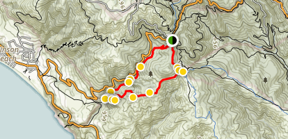 Dipsea Trail to Steep Ravine Trail Loop from Pantoll Map