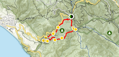 Dipsea Trail Map on