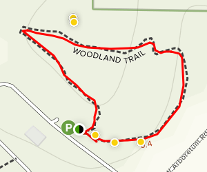 Woodland Discovery Trail Map