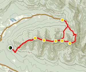 Blackhead, Black Dome and Thomas Cole Loop Trail Map