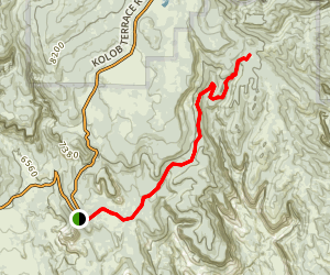 Wildcat Canyon Trail Map
