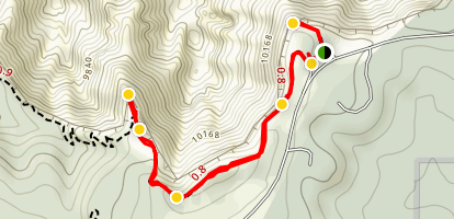 Spectra Point Trail  Map