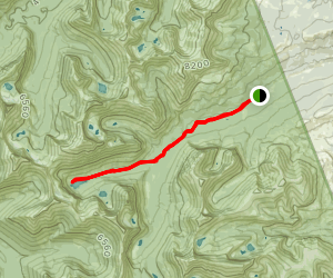 Medicine Grizzly - Tiple Divide Pass Map
