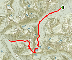 Cut Bank Pass via Pitamakan Trail Map