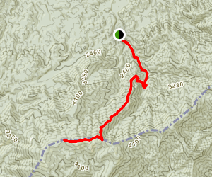 Gregory Ridge Trail to Gregory Bald Map