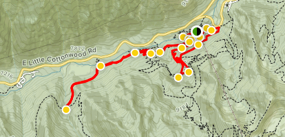 Chauner's Loop and White Pine Trail Map