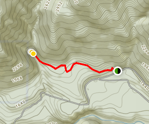 Henline Falls Trail Map
